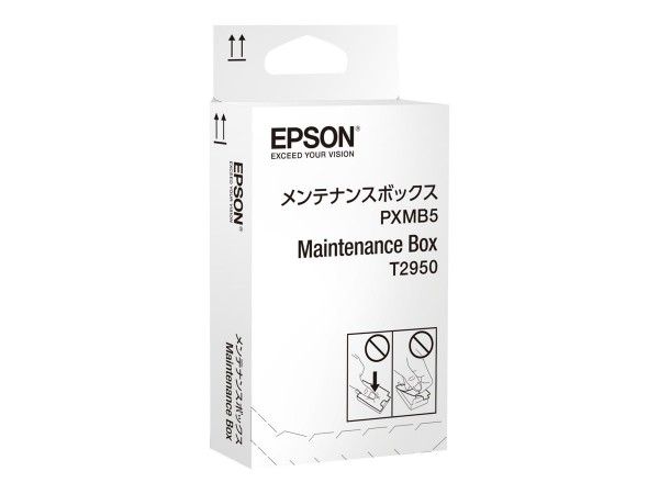 Epson Wartungsbox C13T295000 für WorkForce WF-100 WF-100W